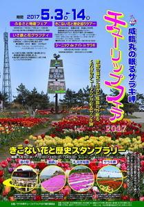 2017tulip_fair-_saraki.jpg