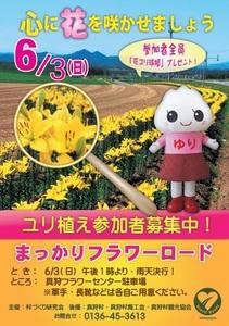 flower_road2018.jpg